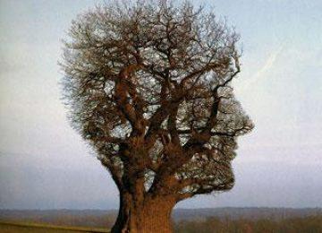 חדשנות בלמידה – לומדים איך ללמוד (32)